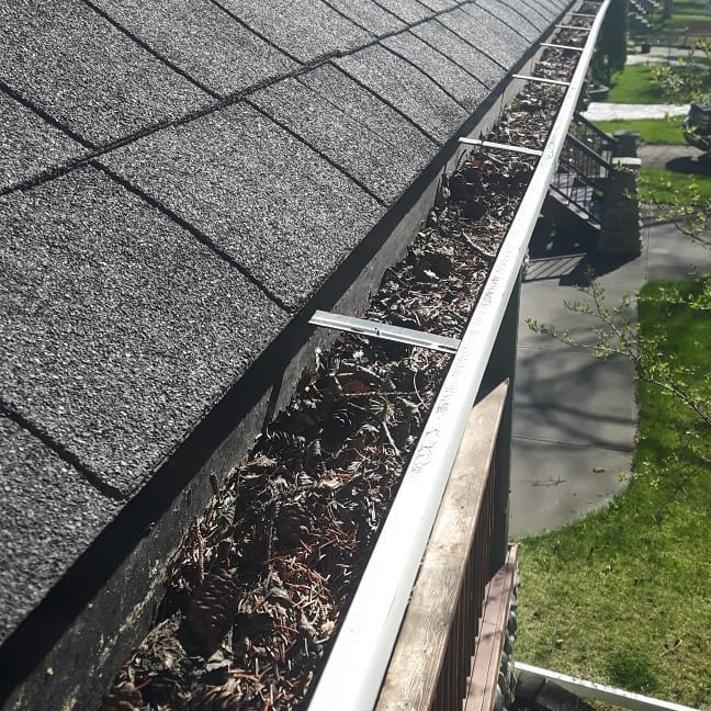 Roof Gutter filled with leaves and debris