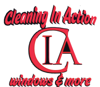 CLEANING IN ACTION VECTOR - BLACK-01